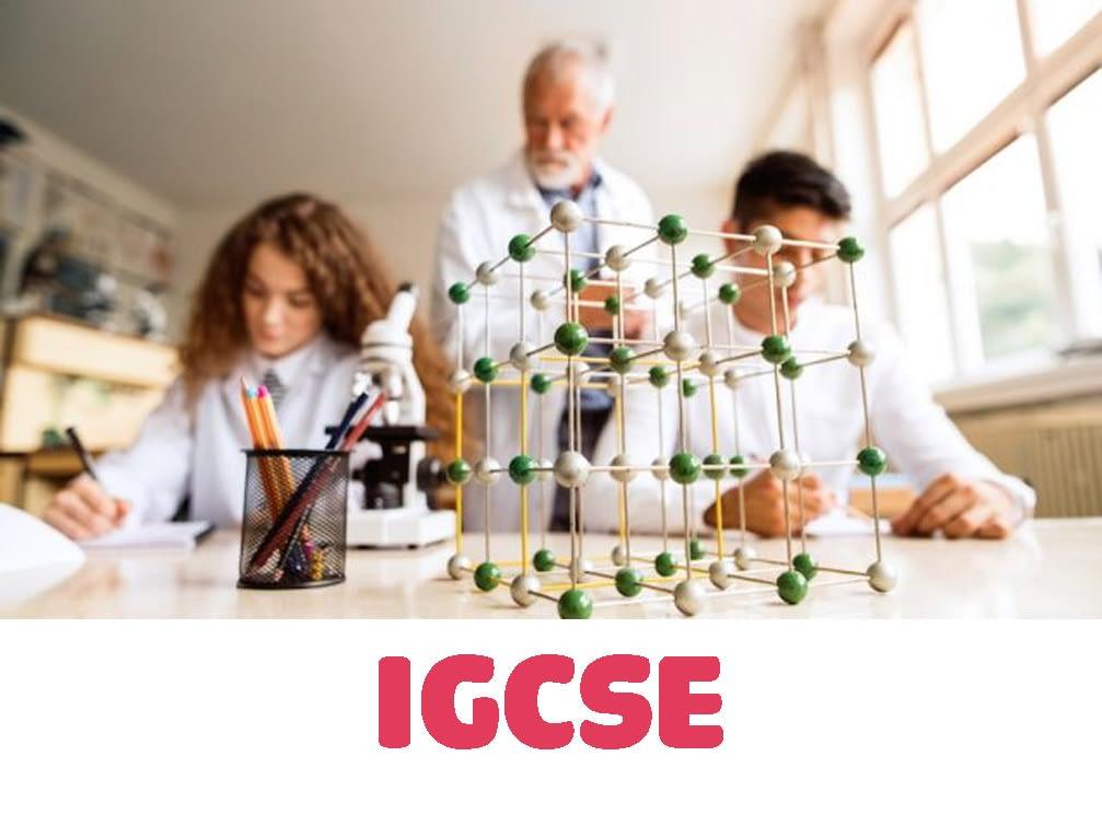 igcse-biology-tutor-in-hcm-city