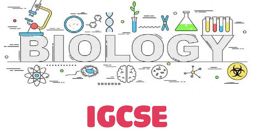 igcse-biology-tutor