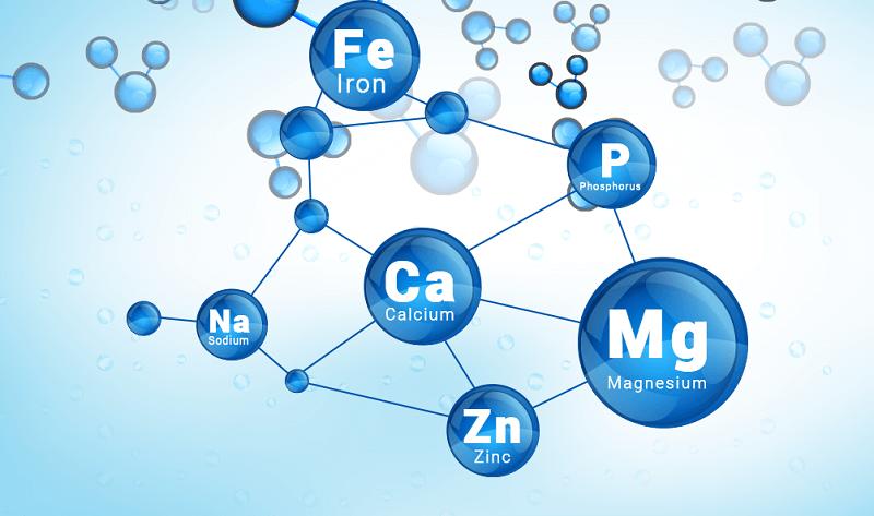 tài liệu dạy Hóa học bằng tiếng Anh program